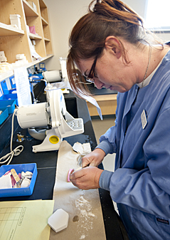 Dental Assisting student works with impressions